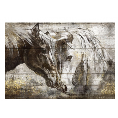 Cadre Chevaux Sauvages
